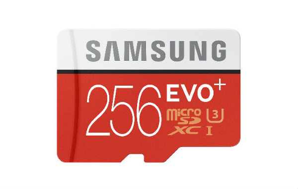Carte Evo Plus 256 Go