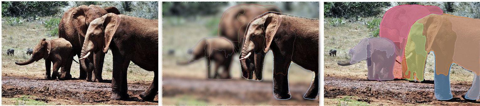 Facebook-elephants