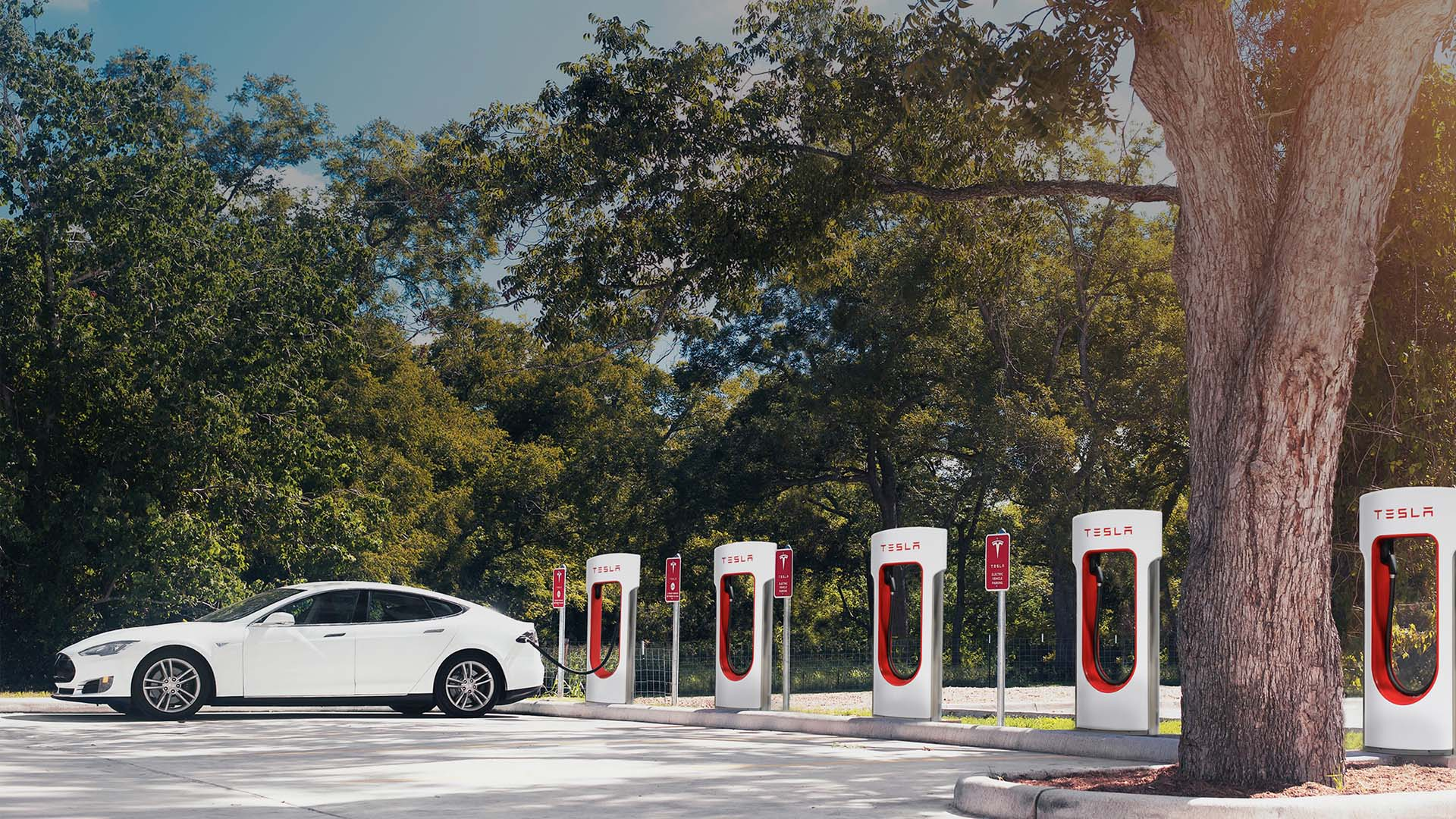 Tesla met fin à son programme de parrainage