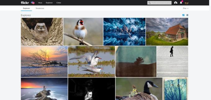 Explorez Flickr