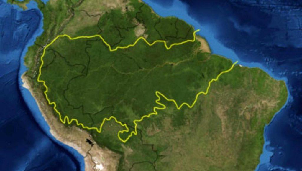 La forêt amazonienne est en feu et Google ne parle que de tablettes Amazon