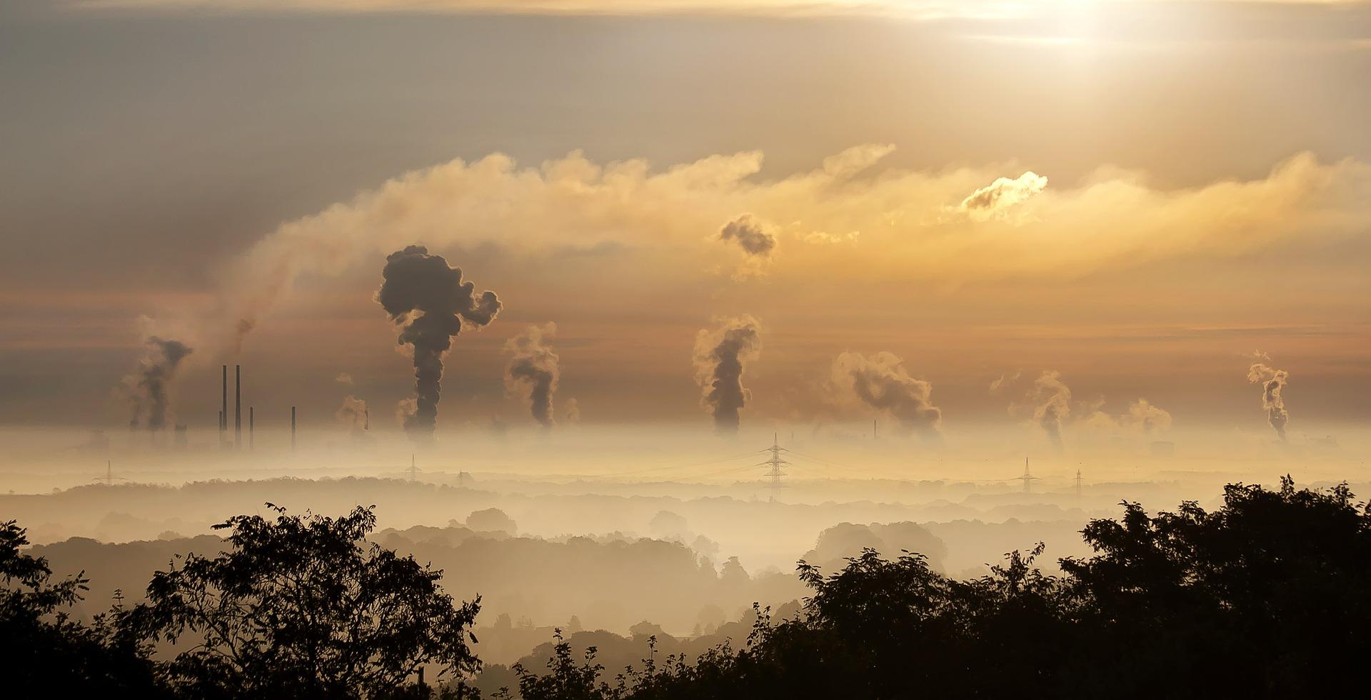 Changement climatique : comment ce matériau pourrait éliminer le surplus de dioxyde de carbone