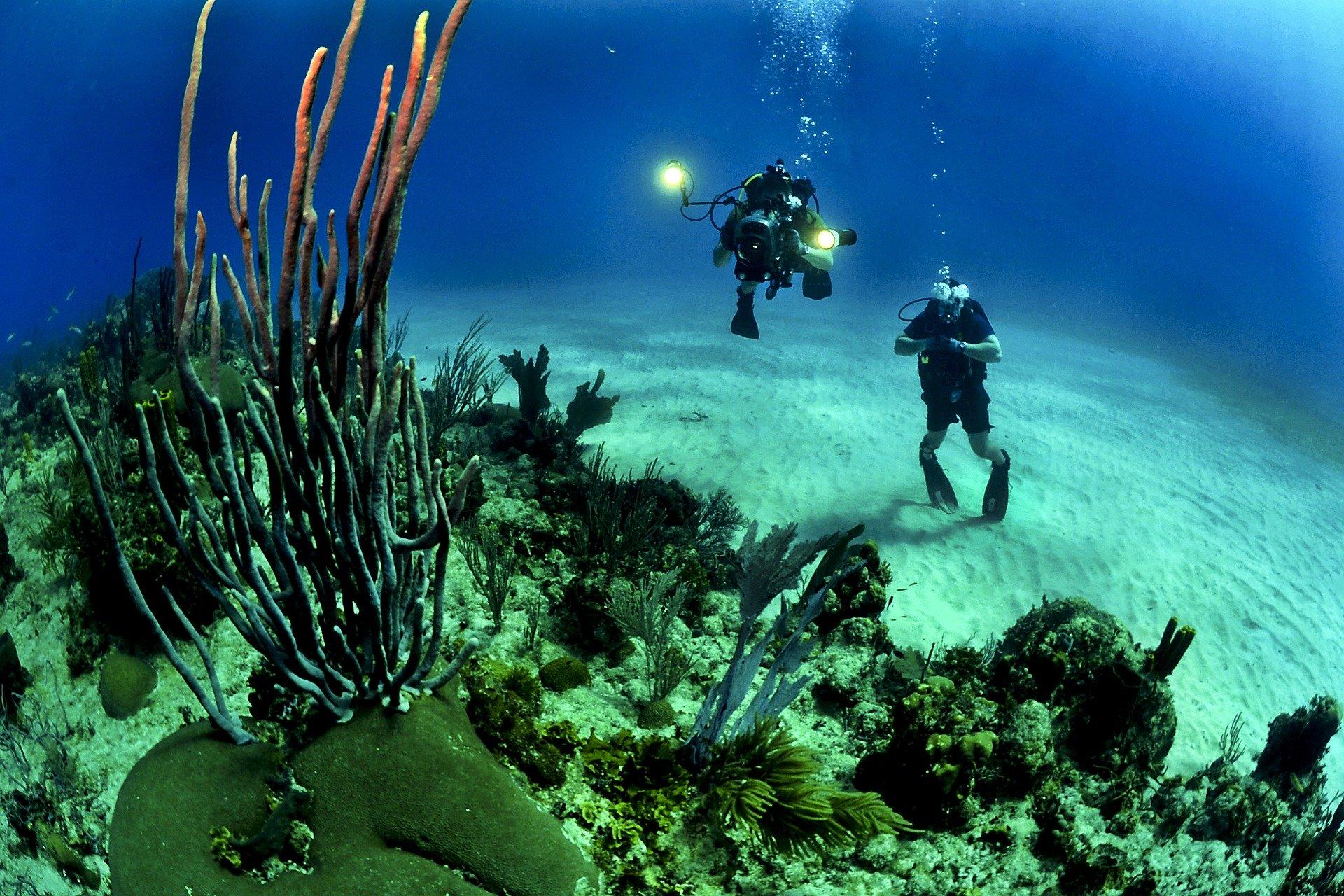 Cet algorithme « supprime » l'eau sur les photos subaquatiques