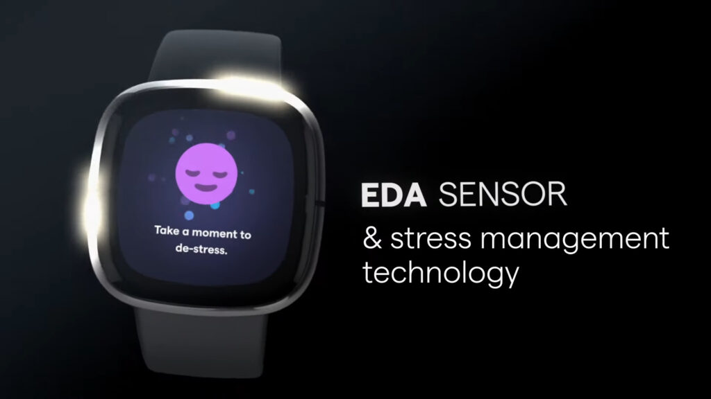 Fitbit says it can measure your stress level with its Sense watch | En24  News