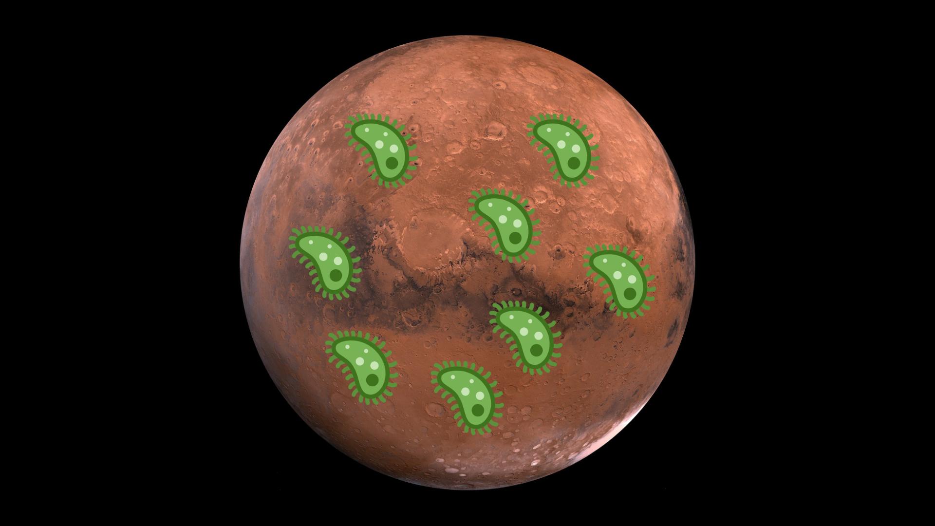 Pourquoi des microbes découverts sous terre passionnent les scientifiques qui cherchent la vie sur Mars