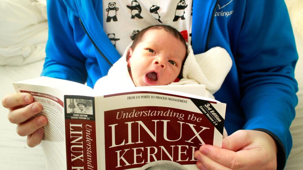 noyau kernel Linux